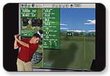P3ProSwing Ace Virtual Golf Studio